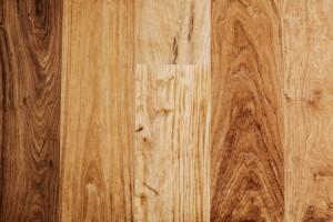 Softwood vs Hardwood
